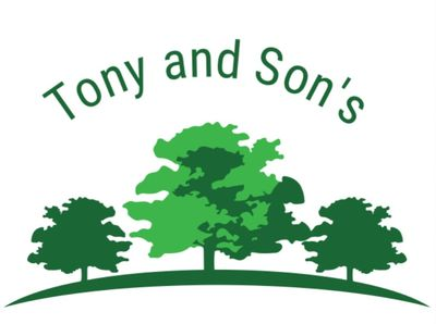 Tony and Son's Landscaping Murfreesboro, TN Thumbtack