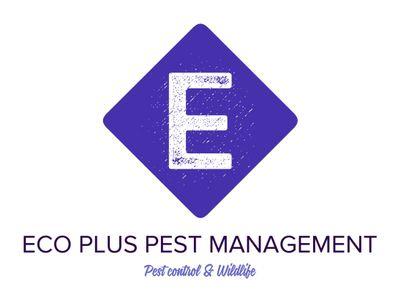 Eco Plus Pest Management & Wildlife N.Y & N.J Bronx, NY Thumbtack