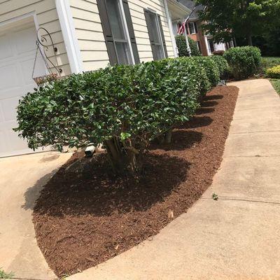 Cruz lawncare & landscaping Raleigh, NC Thumbtack