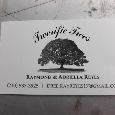 Treerific_Trees