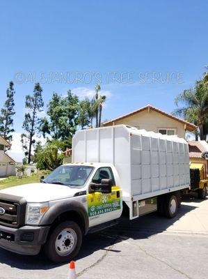 Alejandro's Tree Service Rialto, CA Thumbtack