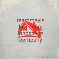 Teammayle lawncare landscape company Kissimmee, FL Thumbtack