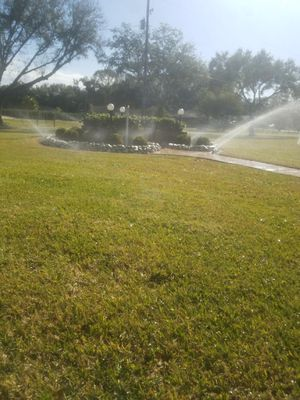 ROSE IRRIGATION Brandon, FL Thumbtack