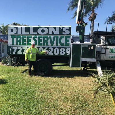 Dillon's Tree Services Pinellas Park, FL Thumbtack