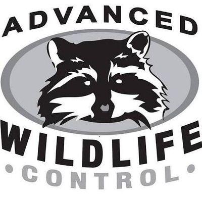 Advanced Wildlife Control, Inc. Mequon, WI Thumbtack