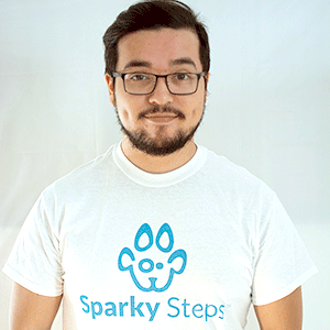 Sparky Steps Chicago, IL Thumbtack