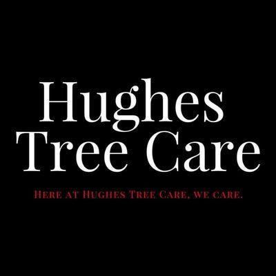 Hughes Tree Care Indianapolis, IN Thumbtack