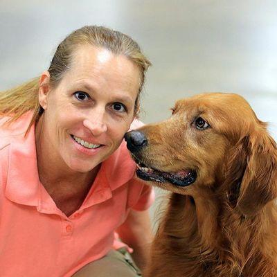 MCK9 Dog Training Lewisville, TX Thumbtack