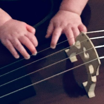 Treble Strings Kansas City, MO Thumbtack