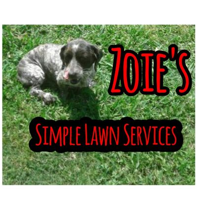 Zoie's Lawn Care Little Elm, TX Thumbtack