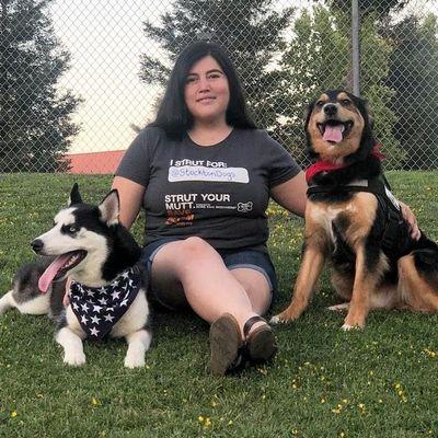 STOCKTON  DOGS 405.4418 -services done in Stockton Stockton, CA Thumbtack