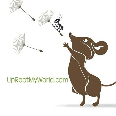 UpRooted Weed & Pest Control Clearwater, FL Thumbtack
