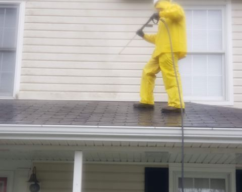 Roof Cleaning- Shingle Cleaning