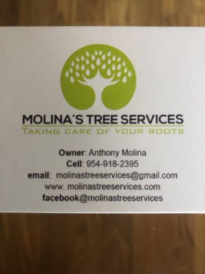 Molina's landscape and design services Fort Lauderdale, FL Thumbtack