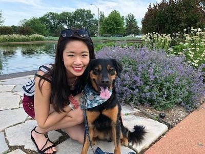 Back to Basics Dog Training Chicago, IL Thumbtack