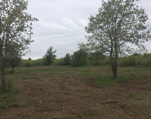 Andrews land clearing