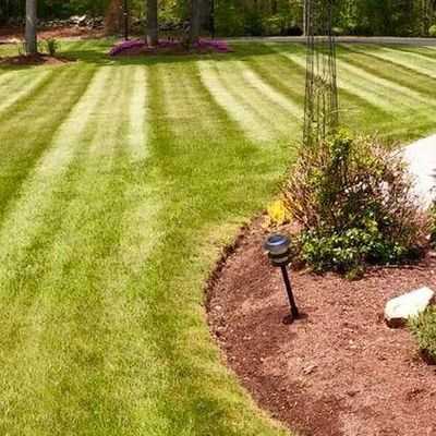 DR's Landscaping Clinton, MS Thumbtack