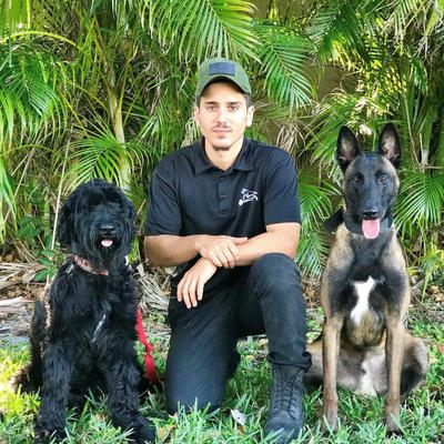 K9 Pack Dog Training Hollywood, FL Thumbtack