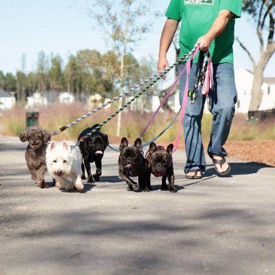 Loving, Quality Pet Care Summerville, SC Thumbtack