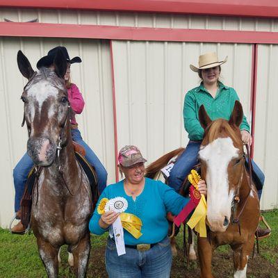 Solomon Show Horses Rhome, TX Thumbtack