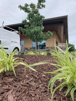 Lawn Creations Landscapes Burlington, NC Thumbtack