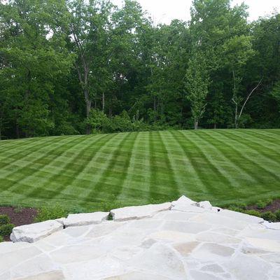 The Lawn Artist Grandview, MO Thumbtack