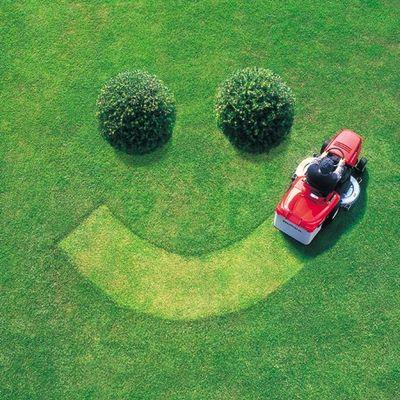 Shane's Lawn Care LLC Dunedin, FL Thumbtack