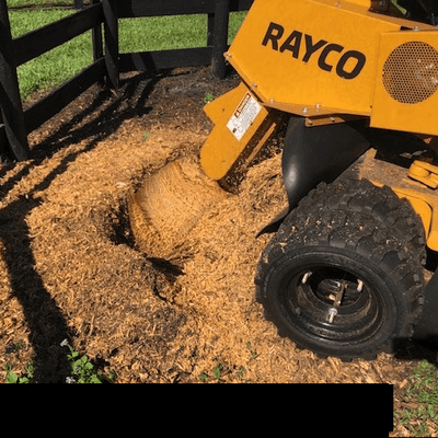 Gottago Stump Grinding West Palm Beach, FL Thumbtack