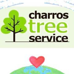 Charros Tree service Glendale Heights, IL Thumbtack