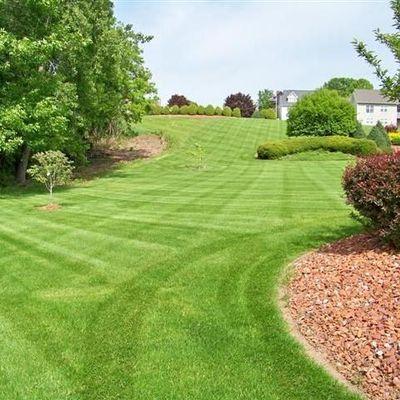 Lawn care services Hiltons, VA Thumbtack