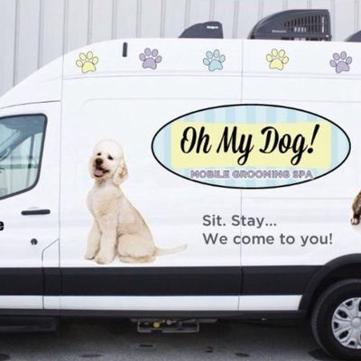 Oh My Dog Mobile Grooming Deerfield, IL Thumbtack