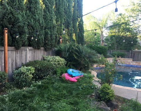 New backyard landscape