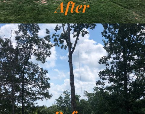 Removal of 3 simple trees