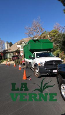 R&R Banuelos tree service Chino, CA Thumbtack