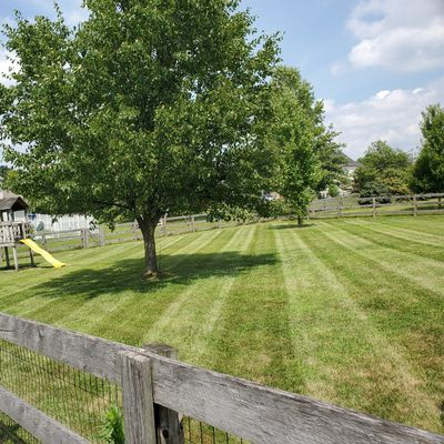 Staying Green Lawncare and Snow Removal Fairfield, OH Thumbtack