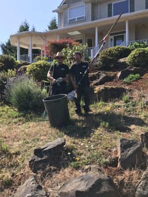 Luis landscape maintenance LLC Mcminnville, OR Thumbtack