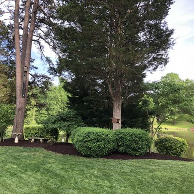 Richey's lawn-care Mooresville, NC Thumbtack