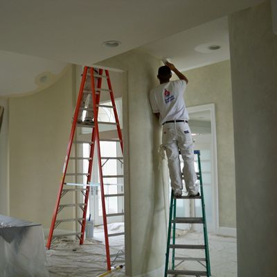 Busy Bee Carpet Cleaning and Painting Roanoke, VA Thumbtack