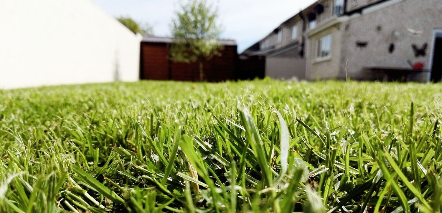 lawn-aeration-suburban-home-green-grass