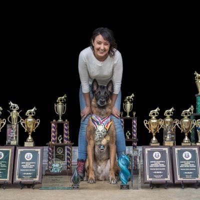 Any Canine- Training & Behavior Modification Apex, NC Thumbtack