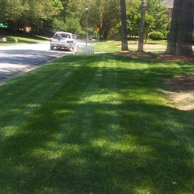Cut-N-Ride landscaping lawn service Matthews, NC Thumbtack