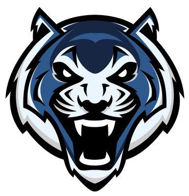 Blue Tigers Pro Mounting Services LLC Alexandria, VA Thumbtack