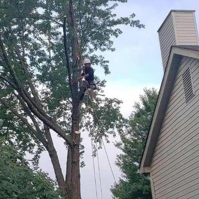 Real sky Tree Service Llc Grove City, OH Thumbtack