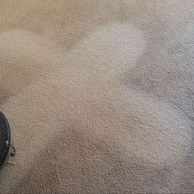 Scotts Steam Cleaning Tenino, WA Thumbtack