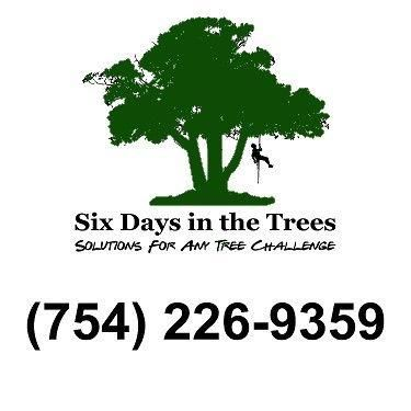 Six Days in the Trees, LLC Hollywood, FL Thumbtack