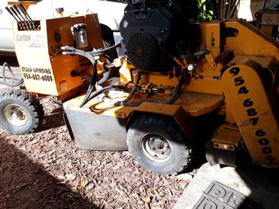 Absolute tree service Hollywood, FL Thumbtack