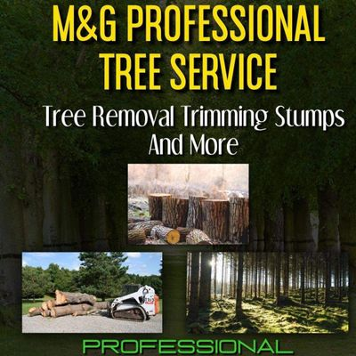 M&G Trees Services and Lawn Care Davenport, FL Thumbtack
