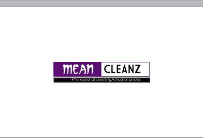 Mean Cleanz Round Lake, IL Thumbtack