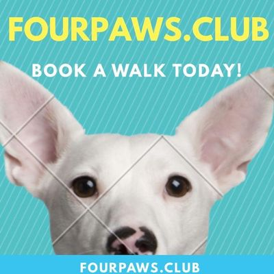 Fourpaws.club New York, NY Thumbtack