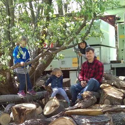 Wolfe Family Tree Co. Elyria, OH Thumbtack